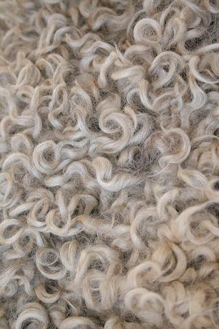 Curls4228
