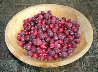 Cranberries5353