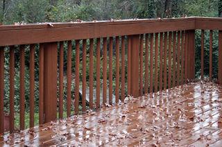 Rainy5385