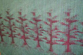 Treesrack5641