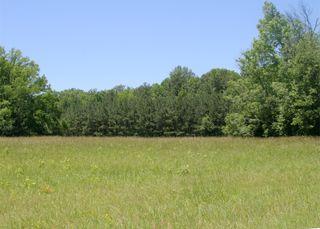 Fieldbefore