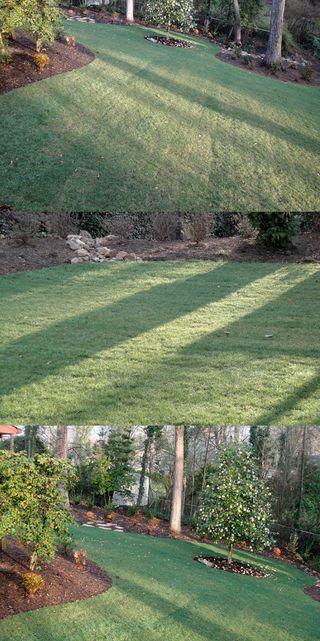 Stripeshadows