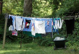 Clothesline3144