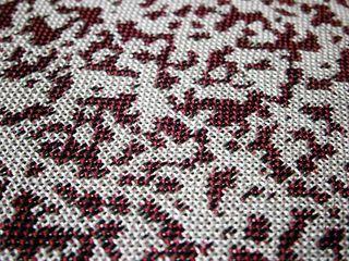 Speckles closeP9130242