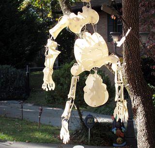 Skeleter0670