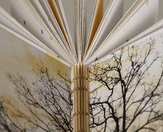 Book011.3