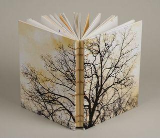Book011.4