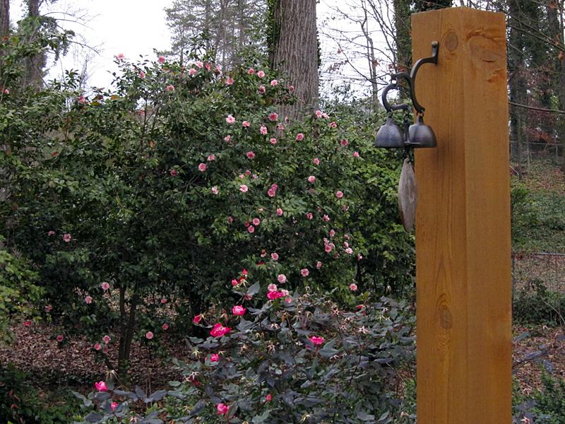 Roses&camellias1152