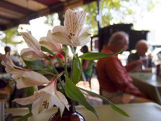 FlowersatcafeP9220142
