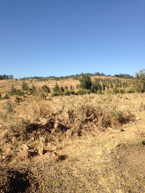 Ethiopia.photo-20