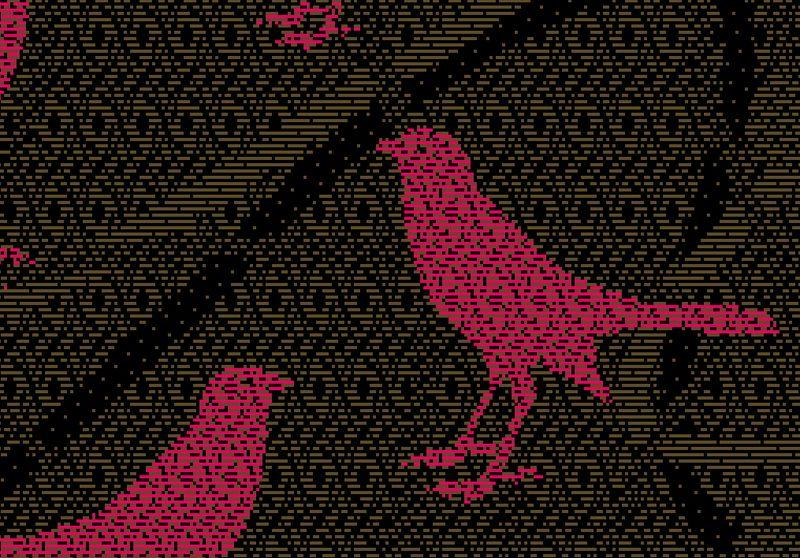 Birdsimulation