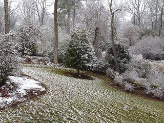 Snow_3283