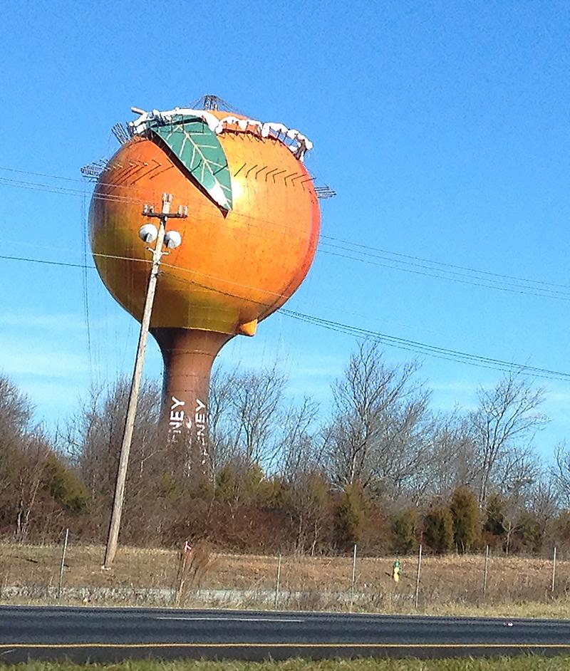 Peach Forward