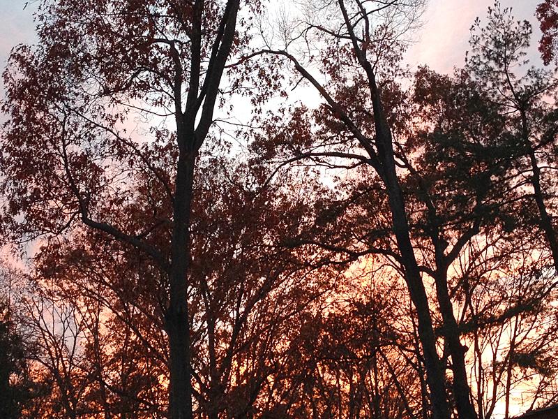 Sunset9837