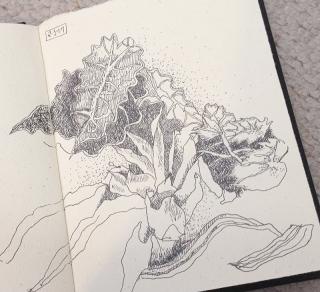 Sketchbook0094