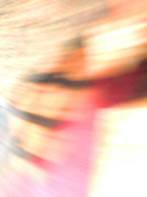 Blur0273