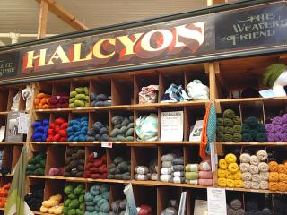 Halcyon1338