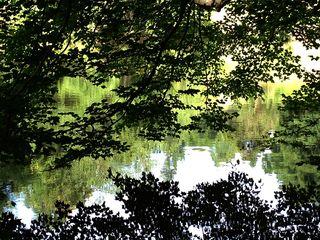 Lake at Connemara