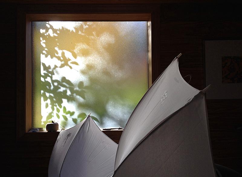 Umbrellas9586