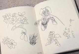 Sketchbook0093