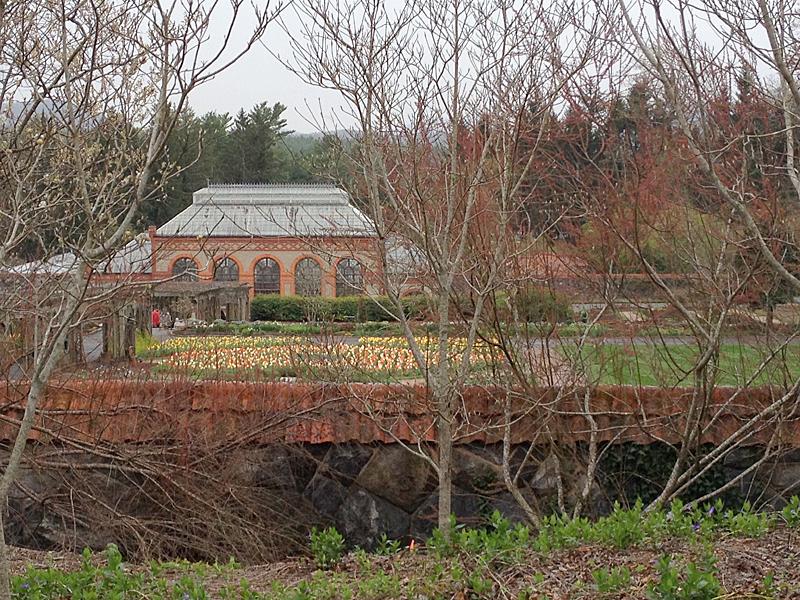 ConservatoryBiltmore2181