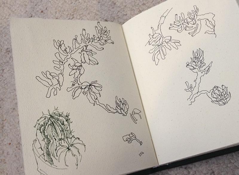 Sketchbook0092