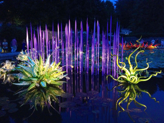 ChihulyBiltmore2455
