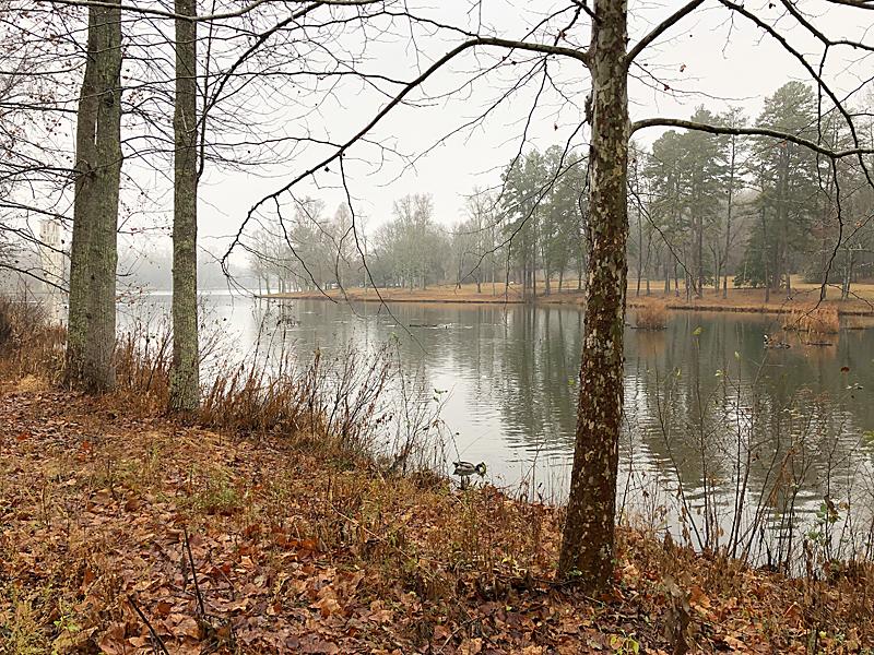 Lake5036