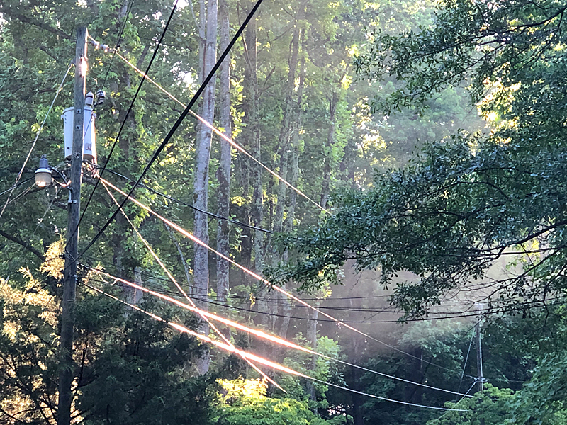 Rays&wires6286
