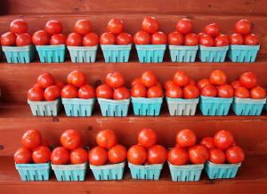 Tomatoes1959